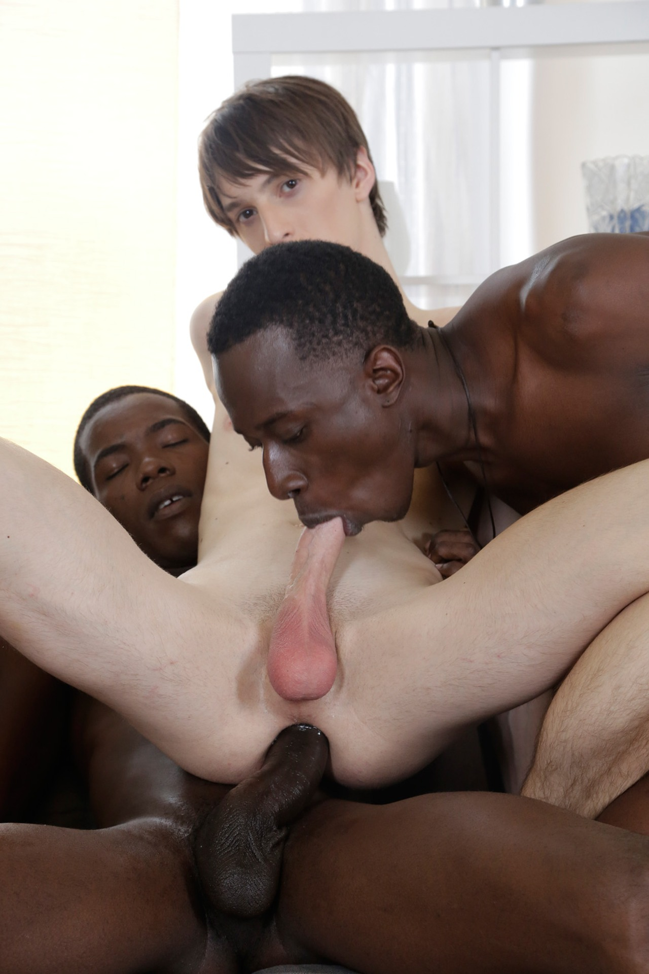hd gay sex tube offentlig